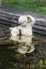 Cherub (duncanz123) Tags: red reflection water pool garden cherub