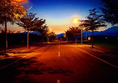 Sunrise & sunshine  (ccps2266ivan) Tags: road morning blue trees light sky sun mountain mountains color tree bird sunshine clouds sunrise square happy photography photo nikon flickr taiwan squareformat   pingtung  d90 nikond90 iphoneography instagramapp