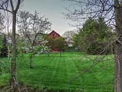 Spring on the Farm (Paul McCarthy...) Tags: trees ohio barn farm scene powell sonyhx300