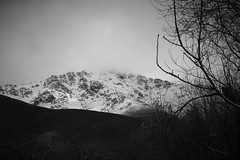 Last snow in March by ioanna papanikolaou CSC_0371 (joanna papanikolaou) Tags: trees winter blackandwhite bw mist mountain snow mountains monochrome beautiful weather misty fog mystery clouds dark season landscape outdoors spring scenery foggy scenic dramatic scene hills greece scape agios germanos prespes