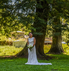the beautiful bride (pbo31) Tags: california park wedding color green bride spring nikon eric dress ceremony bayarea april elcerrito eastbay marry 2016 dugan arlingtonpark contracostacounty boury pbo31 d810