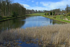 Long pond at Stonyhurst College (Tony Worrall Foto) Tags: county uk trees england college nature wet water reeds pond stream tour open place natural northwest unitedkingdom country north visit location row lancashire area northern update stonyhurst damp attraction lancs stonyhurstcollege stoneyhurst stoneyhurstcollege welovethenorth