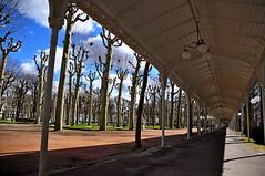 Covered walkway in the parc of sources in Vichy, France (Les Alles couvertes du Parc des Sources, Vichy) (natureloving) Tags: france nikon perspective tress vichy d90 coveredwalkway natureloving parcdessources lesallescouvertes