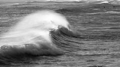 Vento (Mario Bertocchi) Tags: bw surf mare bn carrara vento onda serf partaccia mariobertocchi