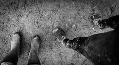 II  II (neerod81) Tags: bw feet monochrome fun mud legs dirt rubberboots gummistiefel matsch hooves hufe myhorse schwarzweis uglyweather
