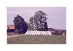 * (Daniel Espinoza) Tags: film analog schweiz switzerland suisse fineart 35mmfilm transparency analogue expired analogica diapositive filmphotography fujisensia400 nikonfe10 onlyfilm danielespinoza