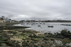 Boats anchored along Rocky shoreline Porto, Portugal (jackie weisberg) Tags: portugal boats harbor shoreline rocky eu porto mossy anchored rockyshoreline jackieweisberg