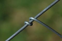 ferraille (bulbocode909) Tags: vert ferrailles