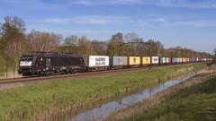 RwDP_08561 (charlesvanlangeveld) Tags: freighttrains 189 rrf containertrain 189094 dordrechtzuid