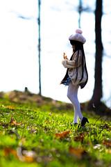 20164DDS04 (twinkle_077) Tags: doll pentax  ks2 dds dollfiedream    dds