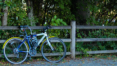 IMG_1268810 (Uday Pratti) Tags: seattle summer redmond sammamish lakesammamish idylwoodpark