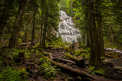Bridal Veil Falls (EdBob) Tags: park longexposure travel trees canada man color tourism nature water forest outdoors rainforest colorful bc britishcolumbia logs trail northamerica destination hiker bridalveil idyllic provincialpark oneperson silky bridalveilfallsprovincialpark