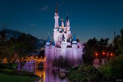 Andyetanothercastleshot (mwjw) Tags: longexposure castle orlando nightshot florida disney disneyworld magickingdom nikon24120mm markwalter nikond800 mwjw