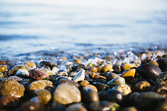 Origins (John Westrock) Tags: water rocks bokeh ground shore westseattle pacificnorthwest washingtonstate lincolnpark canoneos5dmarkiii sigma35mmf14dghsmart