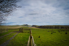 Steel Rigg (tiggertonia) Tags: lake tree history field rock wall lough outdoor steel northumberland romans rigg crag harians