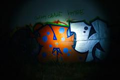 _DSF8710 (Luckybystander) Tags: night trash lowlight flash graffity snowfall flashlght