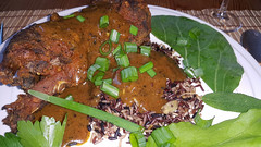 2016-04-25 16.58.23 (Damien_Toman) Tags: new red wild brown black cooking hare rice herbs curry zealand spices nz tandoori