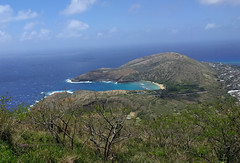 Koko Head Crater Summit View of Hanauma Bay (JonathanWolfson) Tags: hiking trail hanaumabay hanauma koko kokohead
