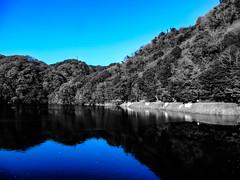 Shashin - DSCN2826 (Mathieu Perron) Tags: life city bridge blue people bw white black monochrome japan nikon noir perron daily nb bleu journey  mp blanc  japon personne ville gens vie mathieu   sjour   quotidienne      p520  zheld