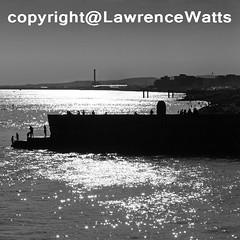 BathersSilhouette (BrightonPhotographer) Tags: sea blackandwhite silhouette swimming pier brighton bathing groyne bathers