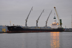 Peace (larry_antwerp) Tags: netherlands port ship peace nederland vessel bulk  schip        sluiskil     ribexmaritime   9553983