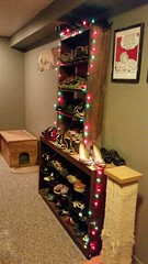 shoe-case xmas lights (carbonated) Tags: xmas shoes holidays hallway scratchingpost 2015 allmyfancies alsoaflyingfishlithographonthewall