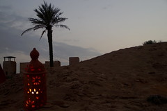 88 Dubai-Desert-Sunset Experience (xabyjordi) Tags: dubai uae abu dhabi oman muscat