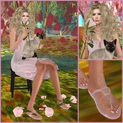 (Gillian_Galicia) Tags: glance slipper katink slink analogdog poeticcolors lepoppycock coldlogic walkamileinmyshoeshunt wamimshunt wamimsh