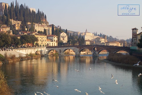 """Verona (Italy) • <a style=""""font-size:0.8em;"""" href=""""http://www.flickr.com/photos/104879414@N07/24217282249/"""" target=""""_blank"""">View on Flickr</a>"""