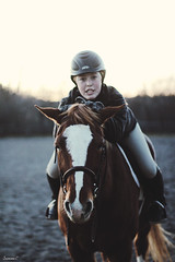 (suzcphotography) Tags: horse cute animal canon 50mm candid riding pony jumper hunter equestrian equine t3i suzcphotography