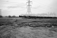 Portskewett 42817bw (kgvuk) Tags: trains locomotive railways mayflower b1 steamlocomotive 460 1306 cathedralsexpress 61306 portskewett southwalesrailway