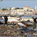 セネガル 画像83