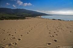 dunas (Franreme) Tags: canon atardecer arena cadiz 5d playas rocas tarifa roja costas
