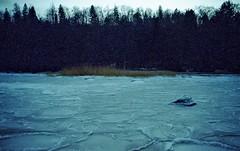176_Tallinn 2016_Nikon F90x_expired Kodak 10-2006 ISO200_035 (nefotografas) Tags: winter sea film lens iso200 nikon tallinn estonia kodak sigma newyear celebration expired 28300mm f90x 102006