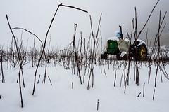 Labores detenidas (flealr92) Tags: snow mountains rural de mexico nikon adventure d750 laguna agriculture monterrey snowscape sanchez holidayish
