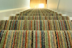 16-02 Stair runner 013 (alasdair massie) Tags: home carpet stair barton