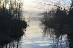 Misty Hrklnjoki river (Salmi, Vihti, 20151129) (RainoL) Tags: november winter mist lake fog finland river geotagged fin uusimaa 2015 nyland salmi vihti vichtis 201511 salmijrvi salmenulkoilualue salmirecreationarea hrklnjoki 20151129 geo:lat=6037466062 geo:lon=2450200047