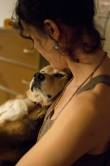 (Bo No Bo) Tags: winter woman dog chien night hiver femme indoors qubec isabelle soir intrieur valdavid confort d7100