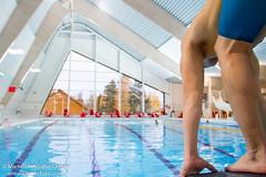 _MG_8828-2.jpg (Markus Kristoffer Dreyer - Dreyer Foto) Tags: sport edvard svmming ringeriksbadet listl