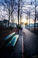 February in Berlin, 2016 (e.querol) Tags: autumn winter berlin germany nikon europe tor brandenburger 1224f4 d7100