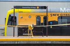 Gold Line Foothill Ext opening day (Metro - Los Angeles) Tags: train losangeles transit pasadena monrovia lightrail goldline arcadia duarte irwindale azusa sangabrielvalley measurer goldlinefoothillextension