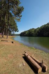 _DSF0381 (NeVaSanYa) Tags: lake traval pangung meahongson