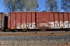 DSC_2433 (huntingtherare) Tags: train bench graffiti seamonster tone freight dma rollingstock cmonster benching dmak sektr