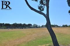 Coronado Tidelands Park (Bryan Robbins Photography) Tags: life park trees summer beach landscape sandiego lifestyle atmosphere palmtrees summertime summerlife summerlifestyle coronadotidelandspark