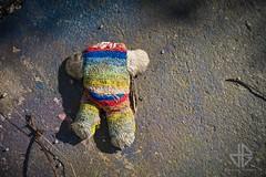 The Murder (Greg 50) Tags: teddy teddybear murder urbex cherbourg meurtre