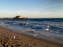 """ Embracing "" (ColFineArtistMar1) Tags: ocean blue sky beach water coast pier sand waves pacific seagull footprints shore"
