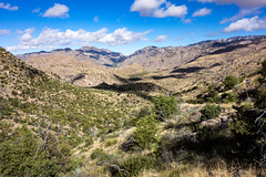 1604 Sycamore Reservoir Area from Shreve Saddle (c.miles) Tags: cathedralrock coronadonationalforest sycamorecanyon santacatalinamountains sycamorereservoir puschridgewilderness sycamorereservoirtrail molinobasintrail shrevesaddle
