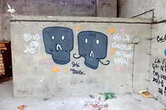 Skulls by Tarek / Moulins, 2016 (Pegasus & Co) Tags: streetart france art skulls skull graffiti artwork artist culture tags allier bombing usine auvergne artworks artiste moulins skullart