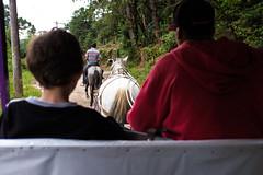 DSCF4609.jpg (marcelo_valente) Tags: fuji fujifilm chariot carroa camposdojordo hourse xphotographer myfujifilm fujilove fujixe2 fujifilmxe2