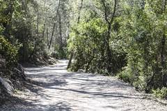 1304162580 (jolucasmar) Tags: viaje primavera andaluca paisaje contraste ros mirador curso puestasdesol cazorla montaas cuevas bosques composicion panormica viajefotof